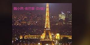 抖音你在巴黎某个角落和某人在看日落是什么歌